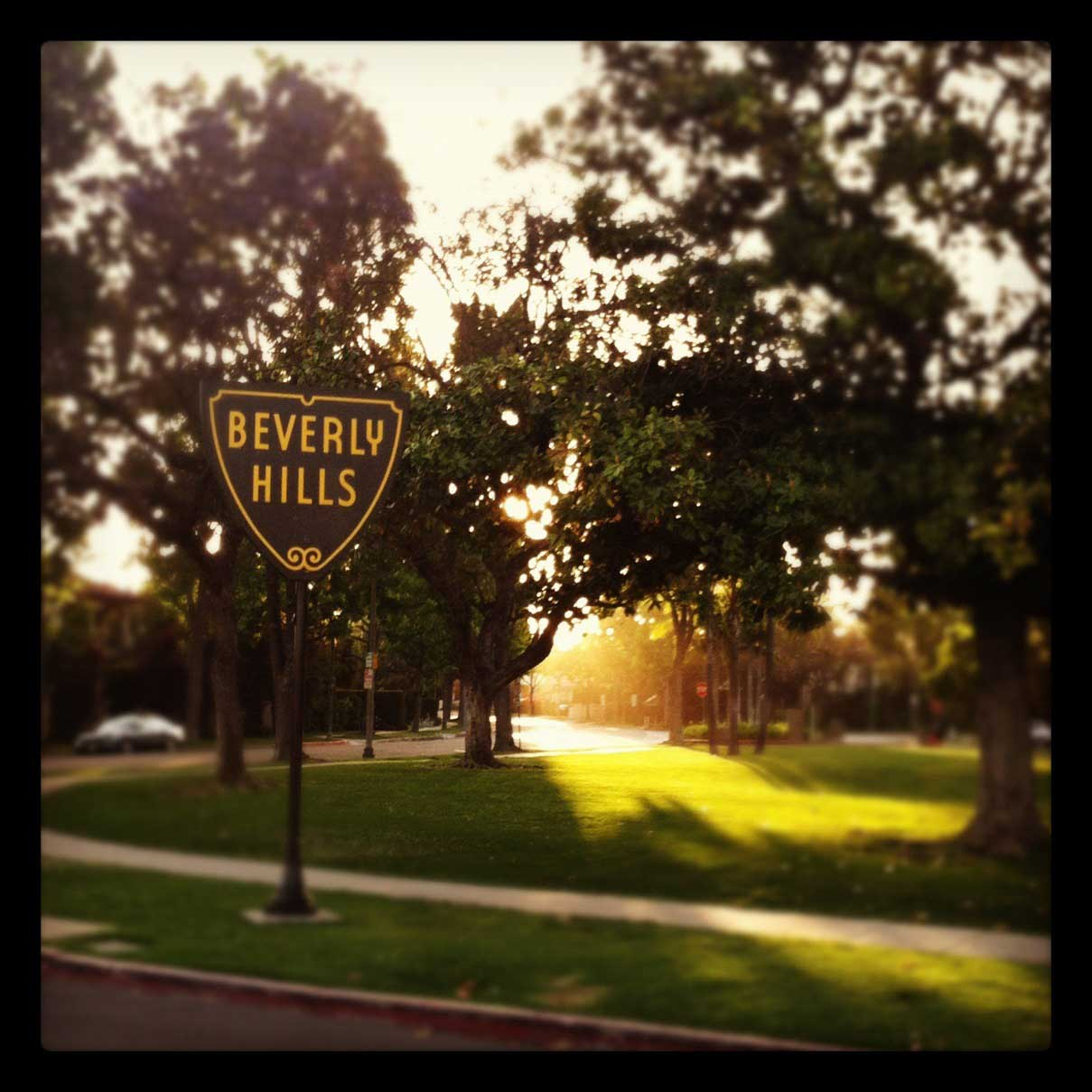 WildCollective - Beverly Hills