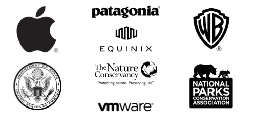 WildCollective Clients